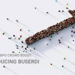 ScaleHub BPO Crowd Boost: Introducing BUSERDI